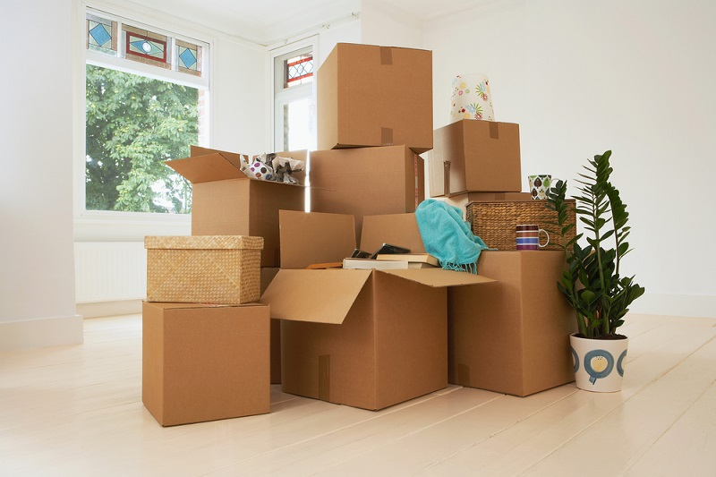 Коробки для переезда?