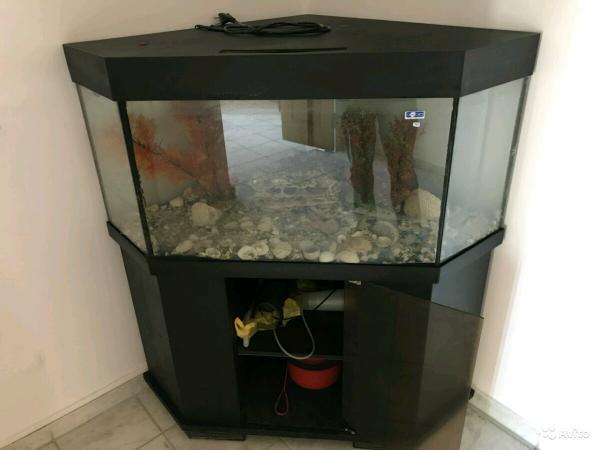 перевезти аквариума С тумбой цена догрузом из Нижневартовска в Ханты-Мансийск