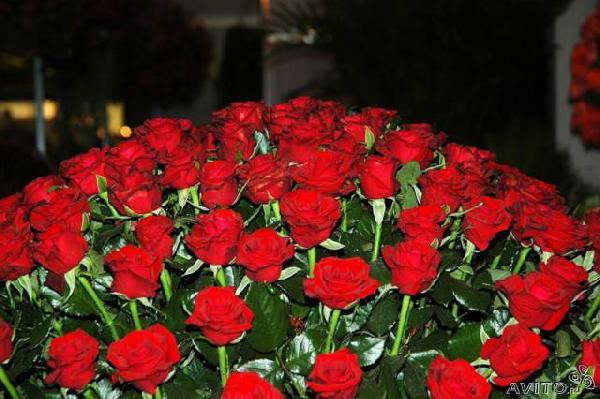 Перевозка розы лежа из Нижний Новгород в СНТ Здоровье