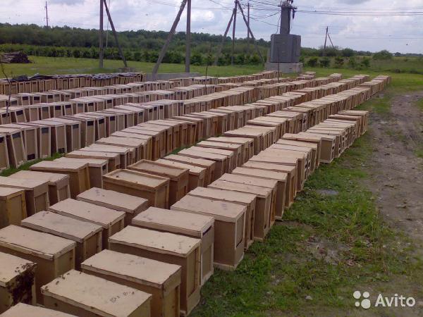 Заказать газель дешево догрузом из Змеиногорска в Томск