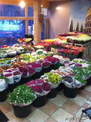 Стоимость доставки цветов из голландии