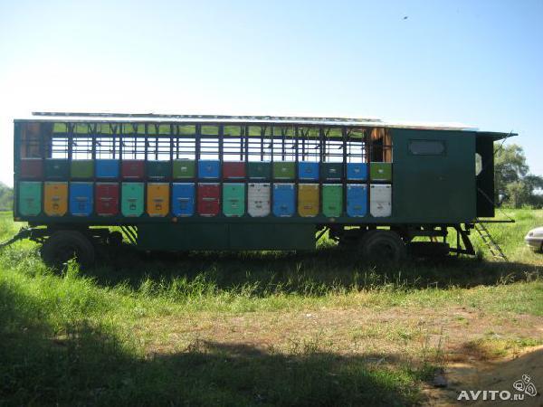 Перевезти перевезти пчелопавильон на мазовском прицепе из Орск в Солнечногорск