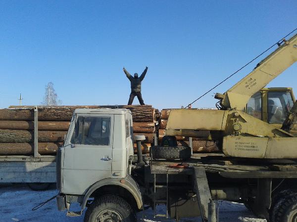 Перевозка ЛЕСА с конниками из Невьянск в Копейск