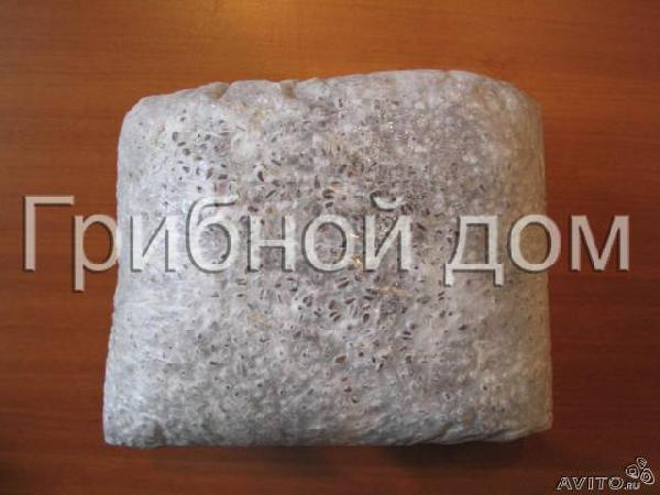 Недорогая перевозка мицелия грибова вешенки в красн из Краснодара в Гулькевичский район