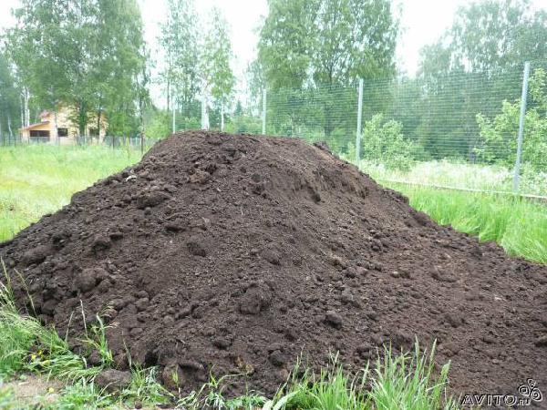 Заказ авто для доставки личныx вещей : Земля,грунт растительный . Сам из Санкт-Петербурга в Здоровье