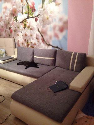 Доставка дивана в квартиру из Калининград в Ярославль