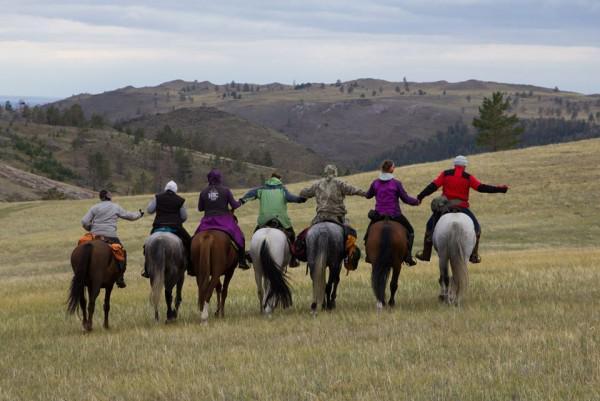 Отвезти лошадь из Иркутск в Симферополь