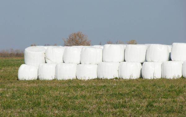 Перевезти 11 тонн сену (1 рулон 250-300 кг.) из Родовое в Сертолово