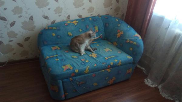 Заказать газель перевезти  диван из Новосибирск в Барнаул