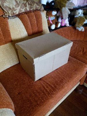 Транспортные компании по перевозки коробки попутно из Россия, Москва в Украина, Киев