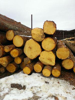 Доставить круглый леса из Петровское (Охотинское с/п) в Брянск