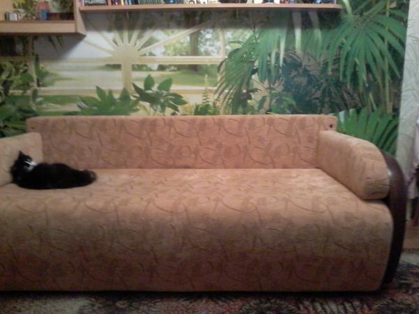 Доставка шкафа-купе + тумбы + стеллажа, дивана 2-спального, дивана 1, 5 спального, стола компьютерного, комода грузчики из город Мурманск в город Колпино