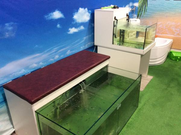 Доставить аквариума С мебелю догрузом из Сочи в Краснодар