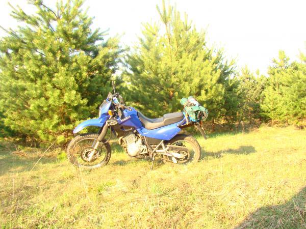 Сколько стоит отправка мотоцикла  из Москва в Воронеж
