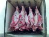 Перевезти мясов полтушаха из Минск в Москва