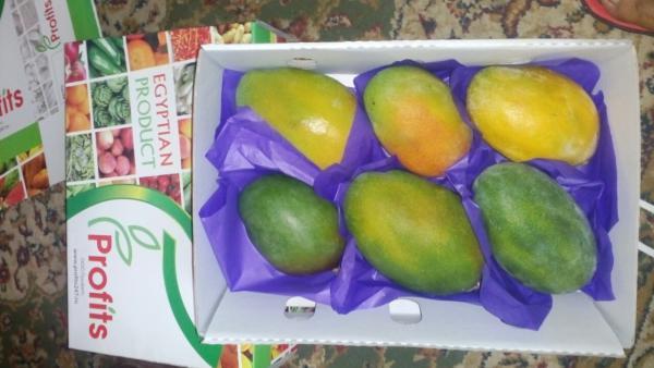 Перевезти манго свежее из Новоросийск в Омск