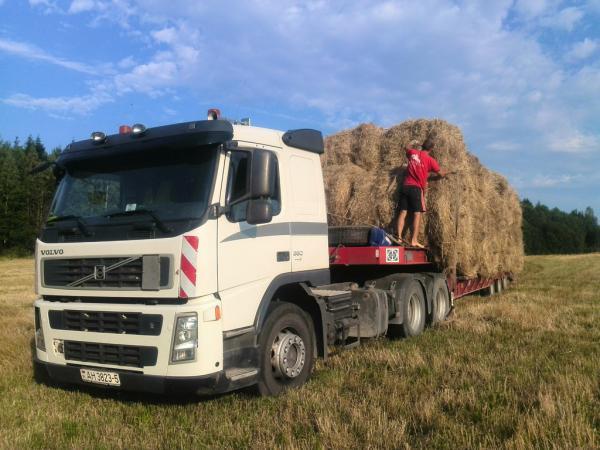 Грузотакси для перевозки сена В рулонах из село Лебедево в село Раздольное