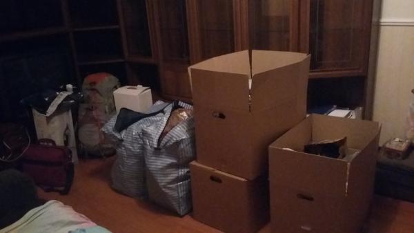 Перевозка недорого 4 коробок С вещами, 2 маленьких  коробок С книгами, комнатных растений упакованных (2 ведра), 2 сумок С вещами по Москве