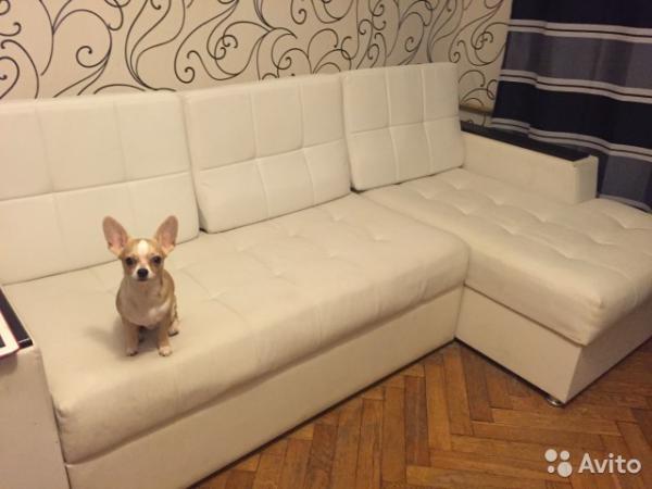 Дешевая доставка дивана по Москве