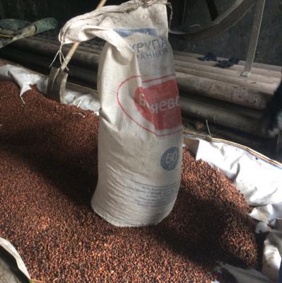 Доставка Кедрового ореха на газели догрузом из Горно-Алтайска в Новосибирск