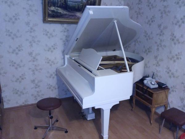 Газель на заказ для перевозки пианино / рояля из Нижний Новгород в Московская область