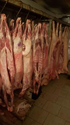 Перевезти мясную продукцию из Элисты в Геленджик