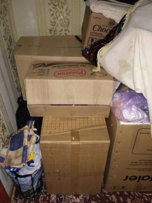Перевозка стиральной Машиной, комода, 10коробка С вещами лежа из Зубовой Поляны в Москву